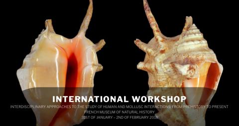 international_workshop.png