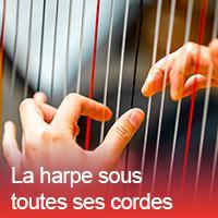 harpe_max300x300.jpg