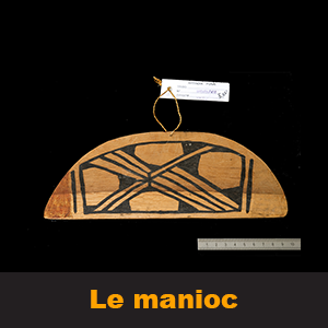 c21-manioc-vignette2_congomanioc.png