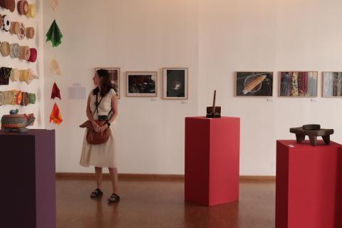Salle d'exposition à l'Institut culturel du Mexique, 2019 - Pauline Rameau