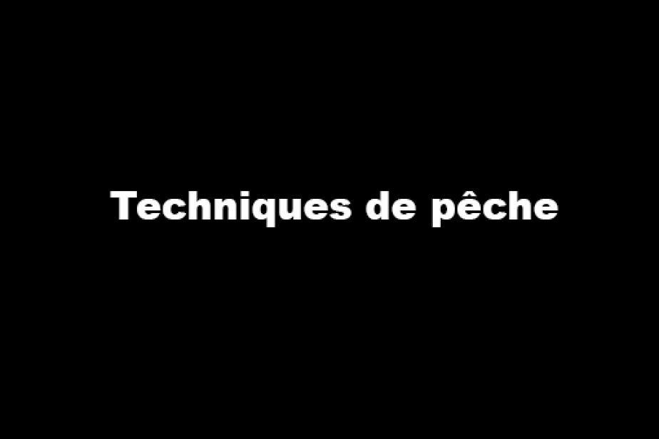 col_-_3_-_21_techniques_de_peche.jpg