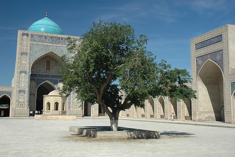2006_-_uzbekistan_-_88_-_dsc_1758_w.jpg