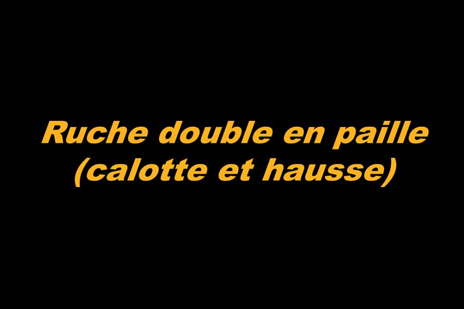 r-ruche_double_en_paille.png