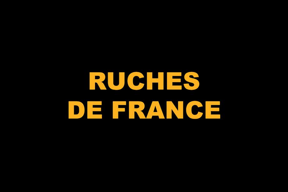 r-ruche_en_france-2.png