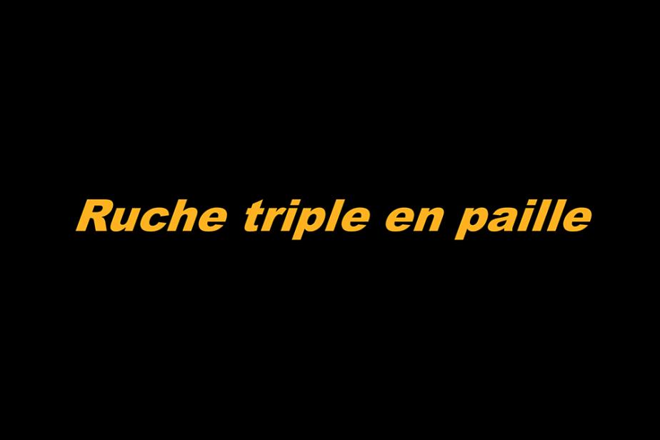 r-ruche_triple_en_paille.png