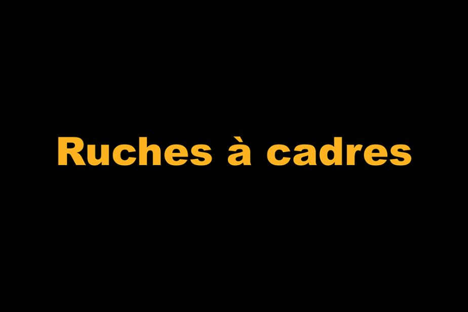r-ruches_a_cadre.png