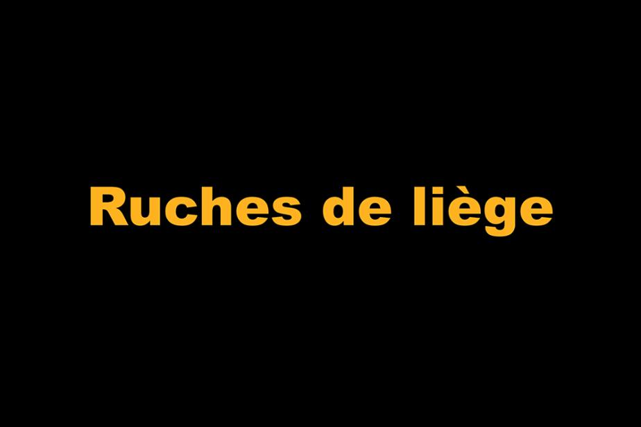 r-ruches_de_liege.png