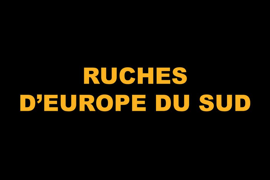 r-ruches_deurope_du_sud.png