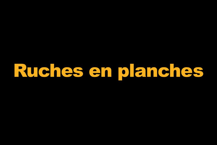 r-ruches_en_planche.png