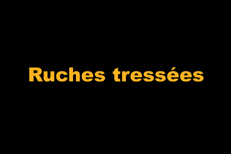 r-ruches_tressees.png
