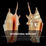 international-workshop-2.jpg