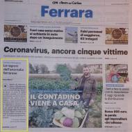 carlino_corona_virus_p1_rogne.jpg